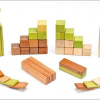 From $25: Magnetic wooden building blocks from Tegu.com