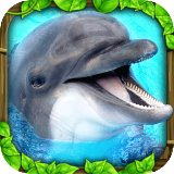 Download Today | Dolphin Simulator