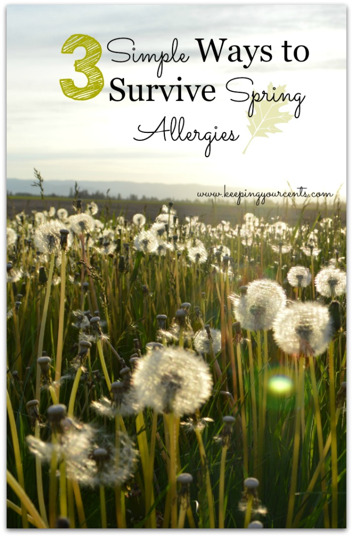3 Simple Tips to Survive Spring Allergies
